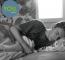 Blog: Krijg Ik Wel Voldoende Slaap?